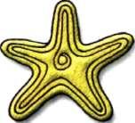 Занятие 63. Морская звезда