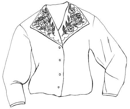 Blouse, embroidered in the corners of the collar